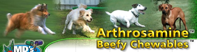 Arthrosamine Beefy Chewables